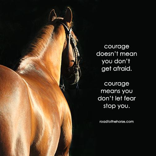 courage horse